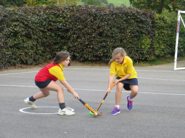 Hockey Coaching (2)