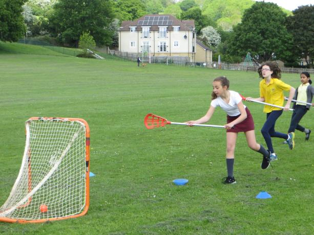 Lacrosse Coaching (3)